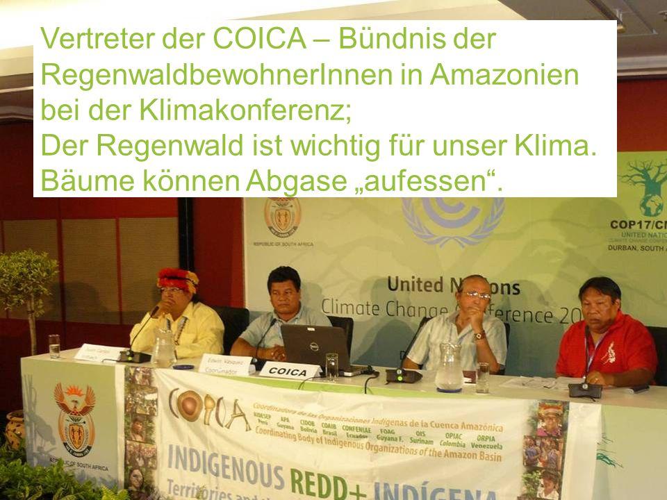 Indigene (Indiander) bei der Klimakonferenz