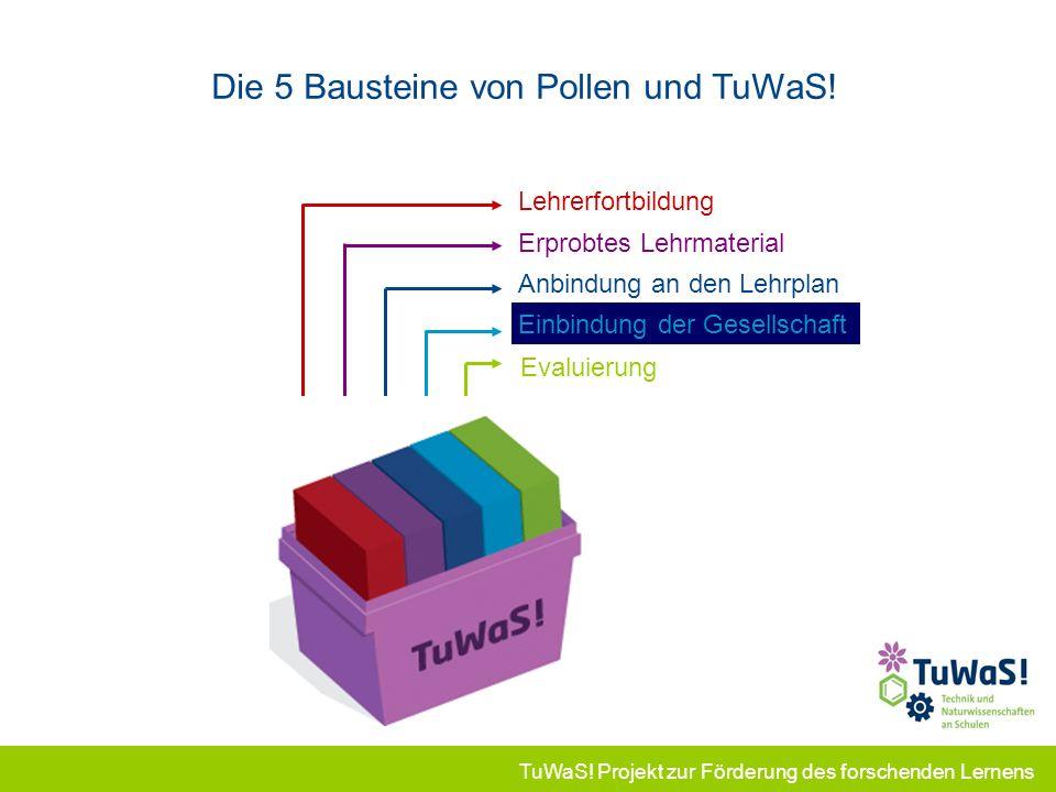 Die 5 Bausteine von Pollen und TuWaS!