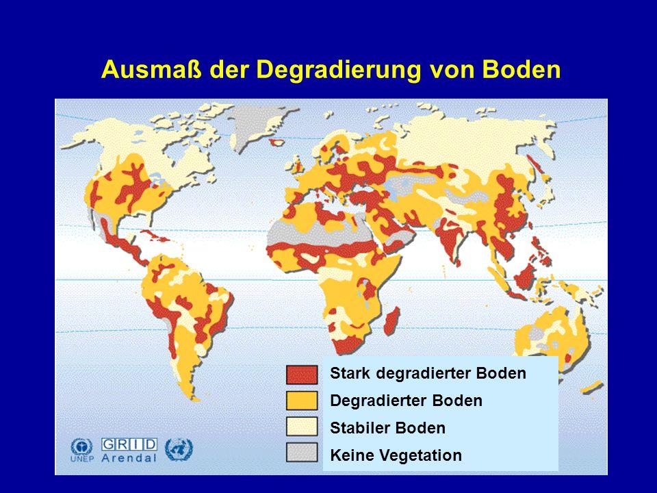 Ausmaß der Degradierung von Boden