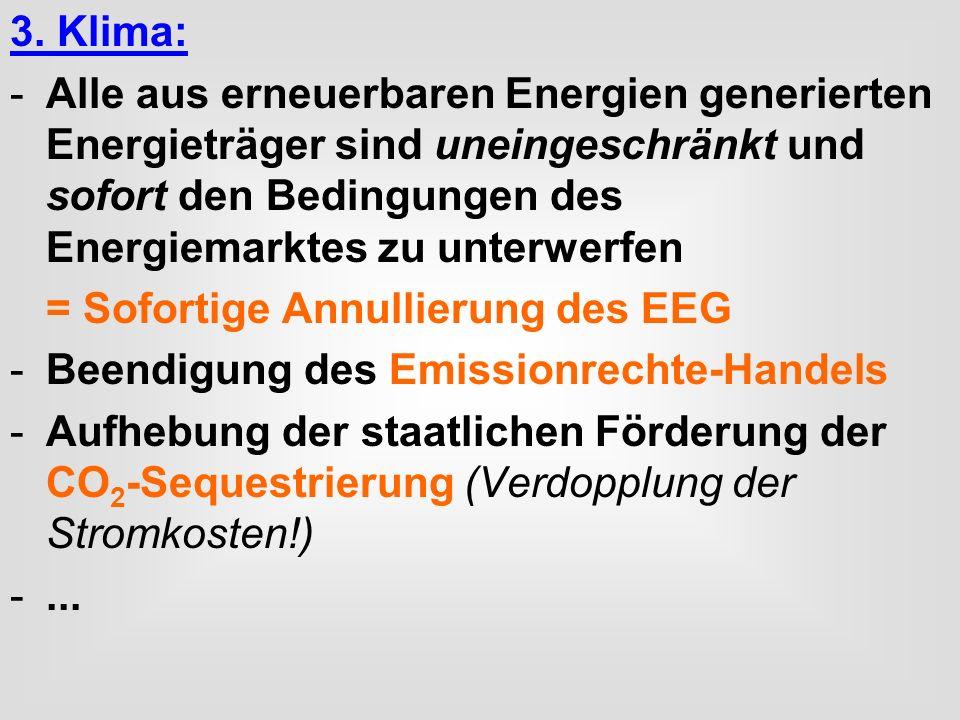 3. Klima: Alle aus erneuerbaren Energien generierten Energieträger sind uneingeschränkt und sofort den Bedingungen des Energiemarktes zu unterwerfen.