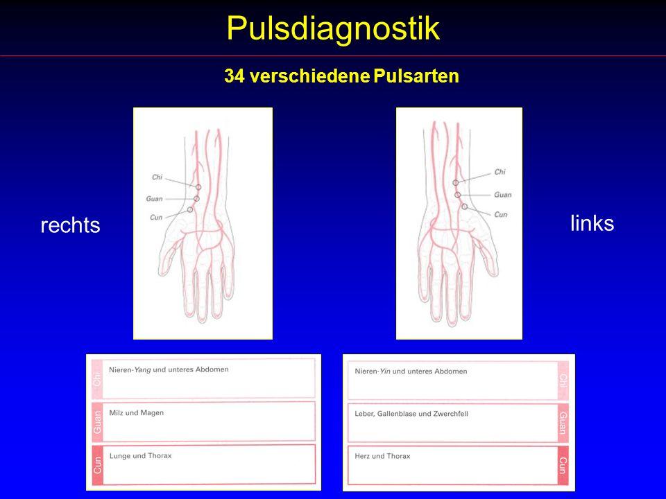 Pulsdiagnostik 34 verschiedene Pulsarten rechts links