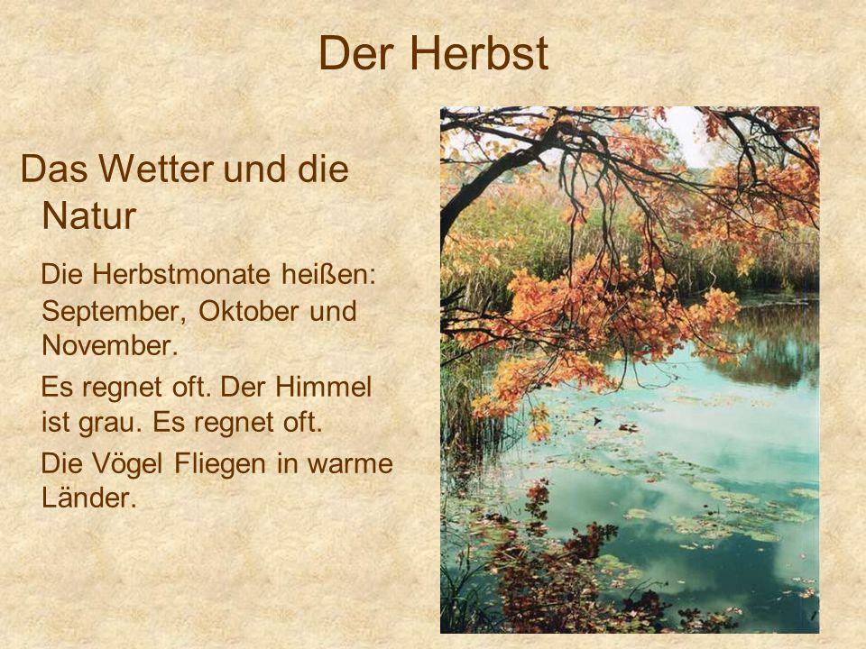 Der Herbst Das Wetter und die Natur