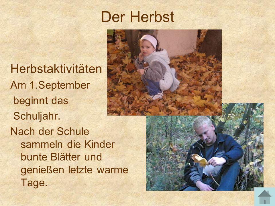 Der Herbst Herbstaktivitäten Am 1.September beginnt das Schuljahr.