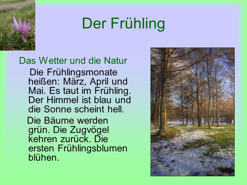 Der Frühling Das Wetter und die Natur