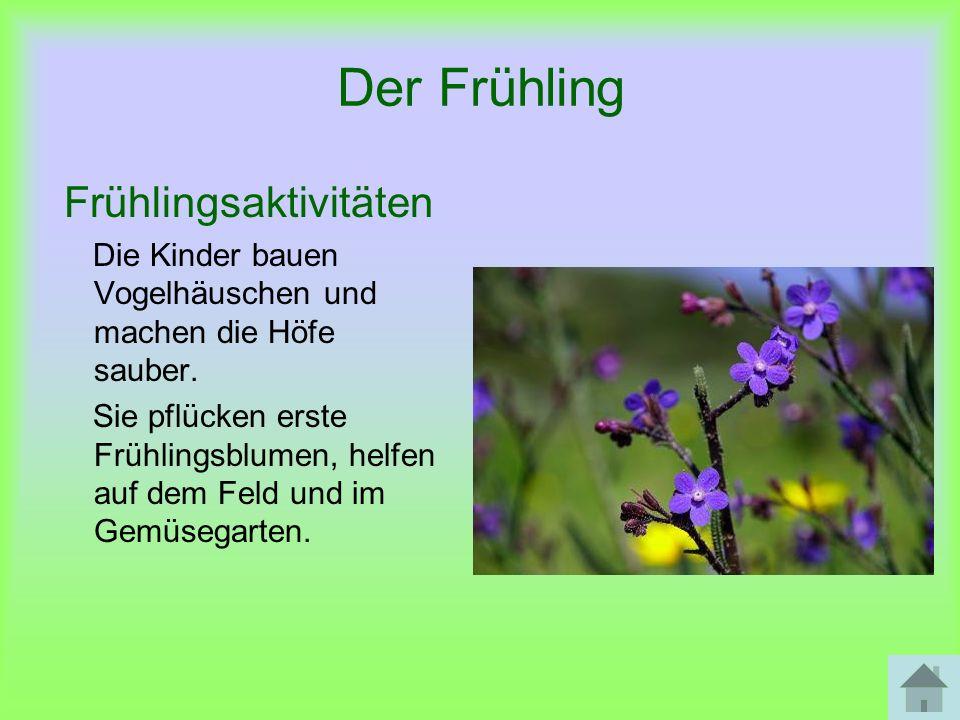 Frühlingsaktivitäten