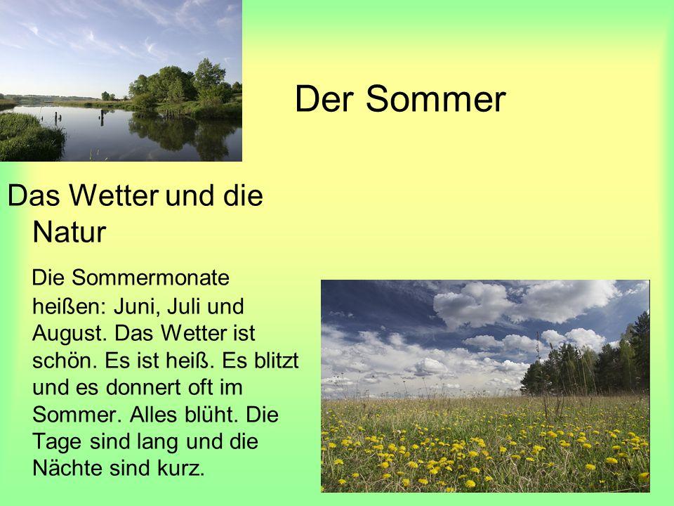Der Sommer Das Wetter und die Natur