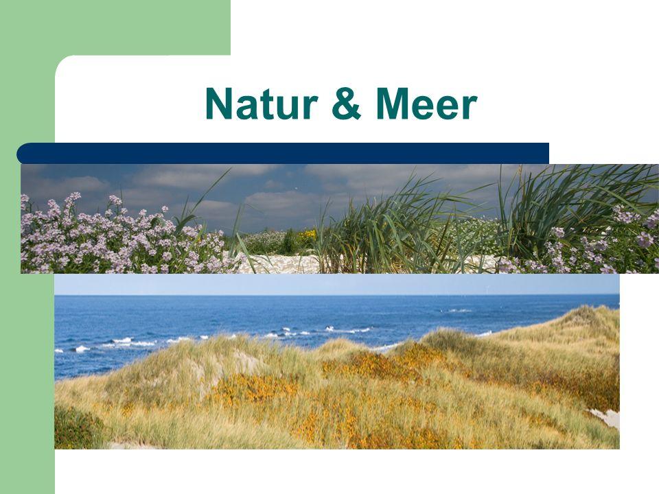 Natur & Meer