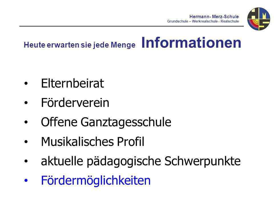 Offene Ganztagesschule Musikalisches Profil