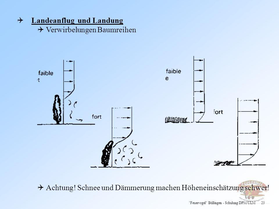Landeanflug und Landung Verwirbelungen Baumreihen