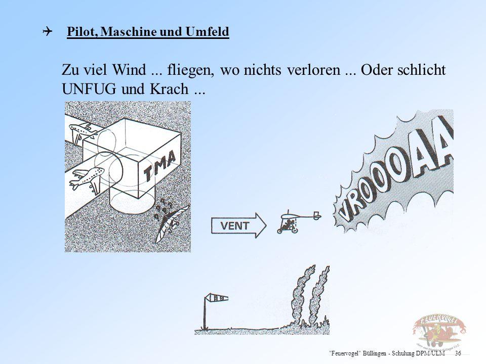 Pilot, Maschine und Umfeld