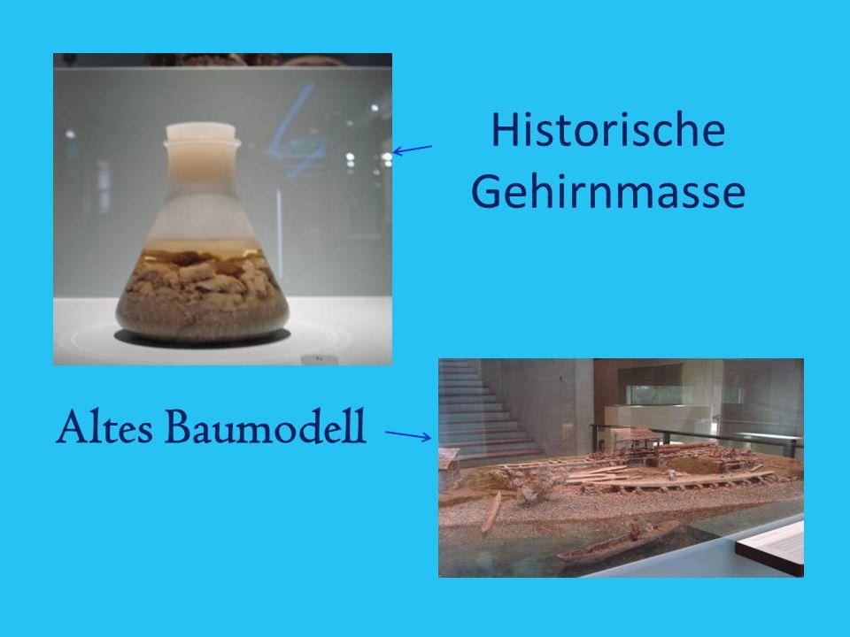 Historische Gehirnmasse
