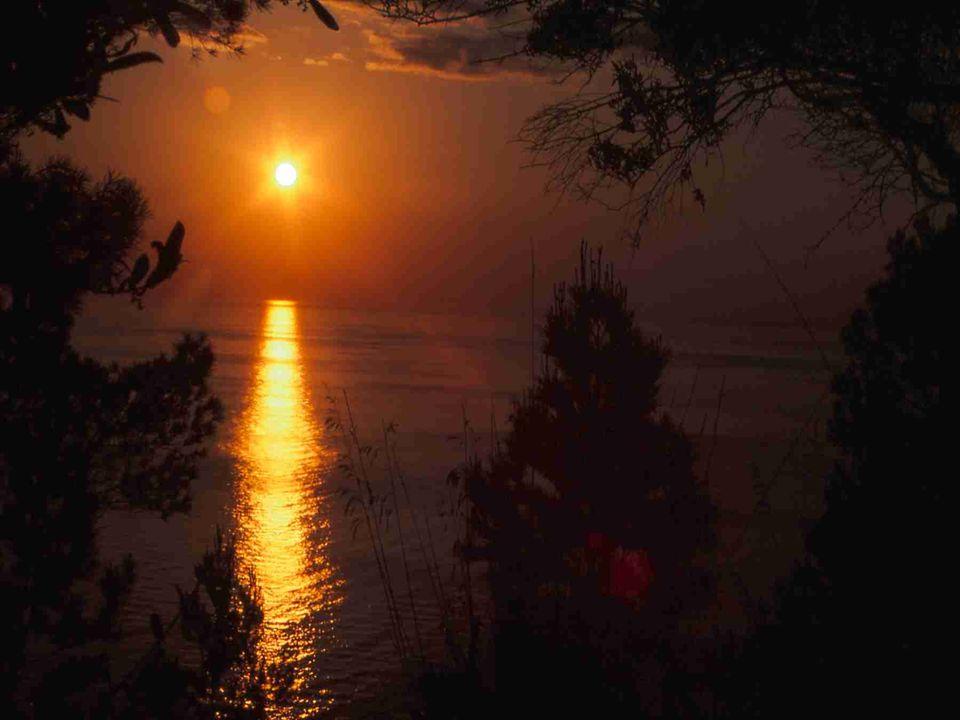 Foto Sonne 1