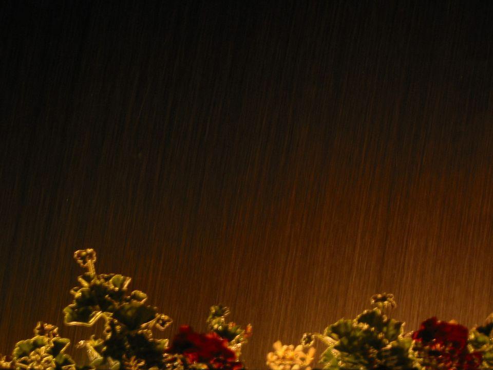 Foto Regenschauer