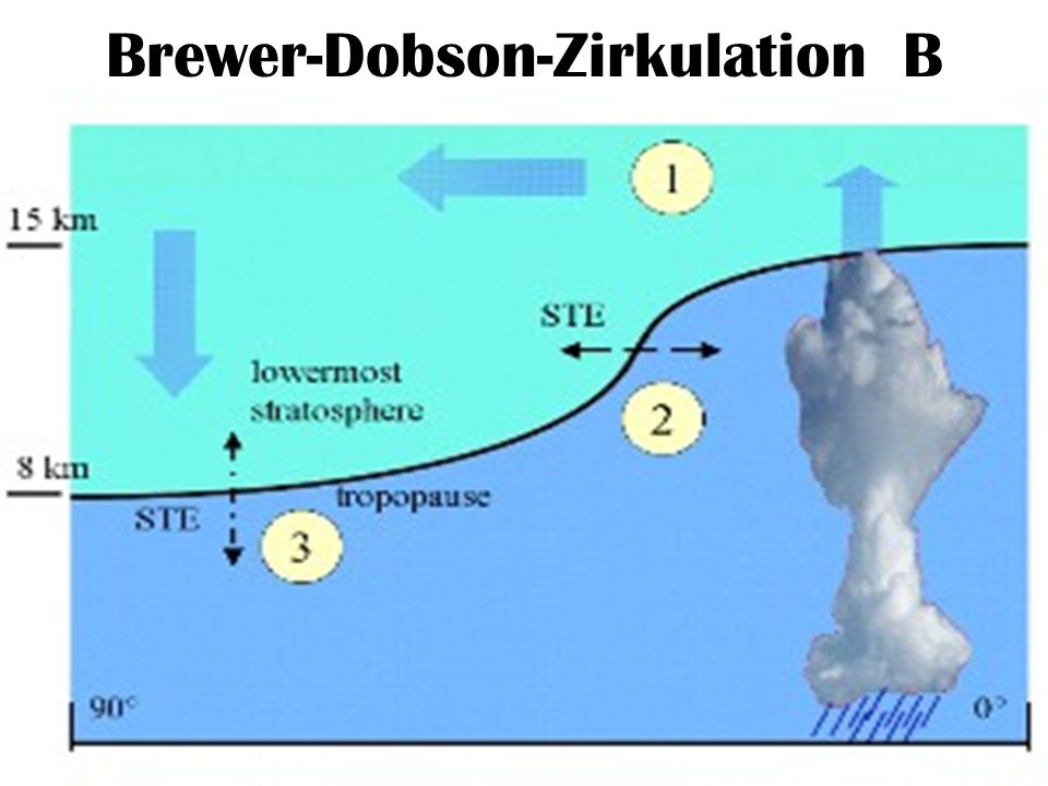 Brewer-Dobson-Zirkulation B