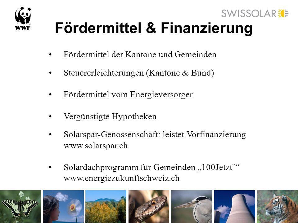 Fördermittel & Finanzierung