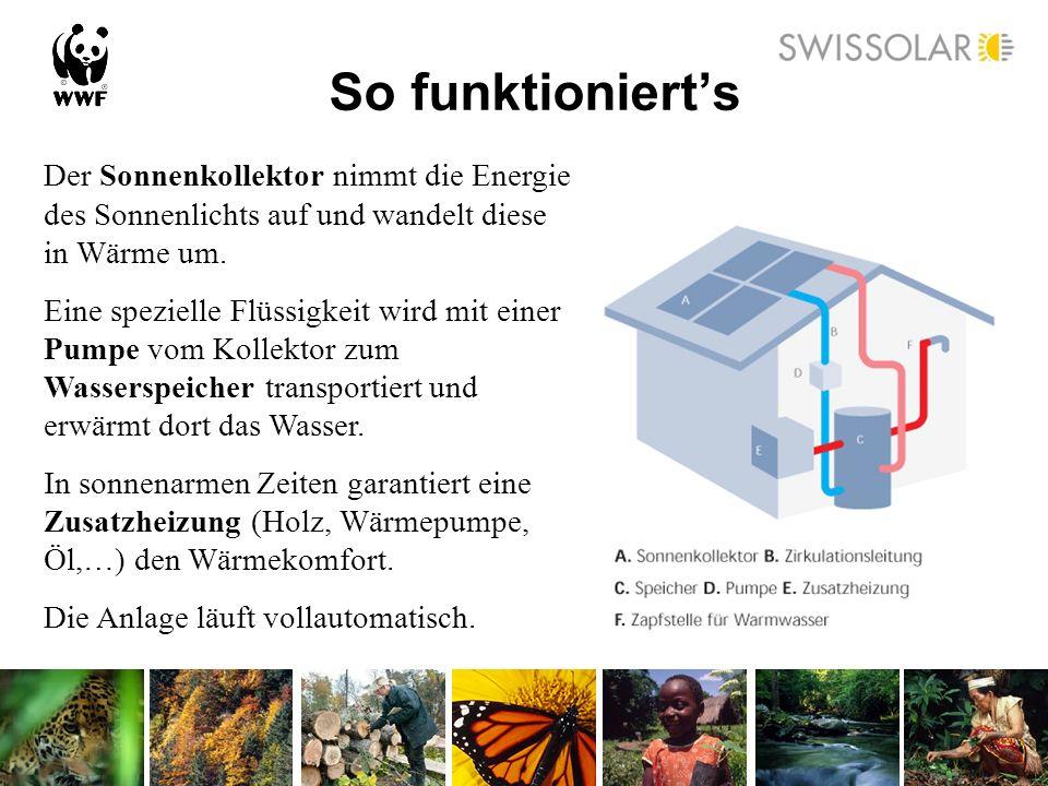 So funktioniert's Der Sonnenkollektor nimmt die Energie des Sonnenlichts auf und wandelt diese in Wärme um.