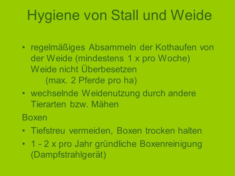 Hygiene von Stall und Weide