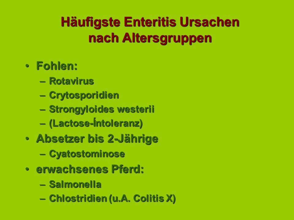 Häufigste Enteritis Ursachen nach Altersgruppen