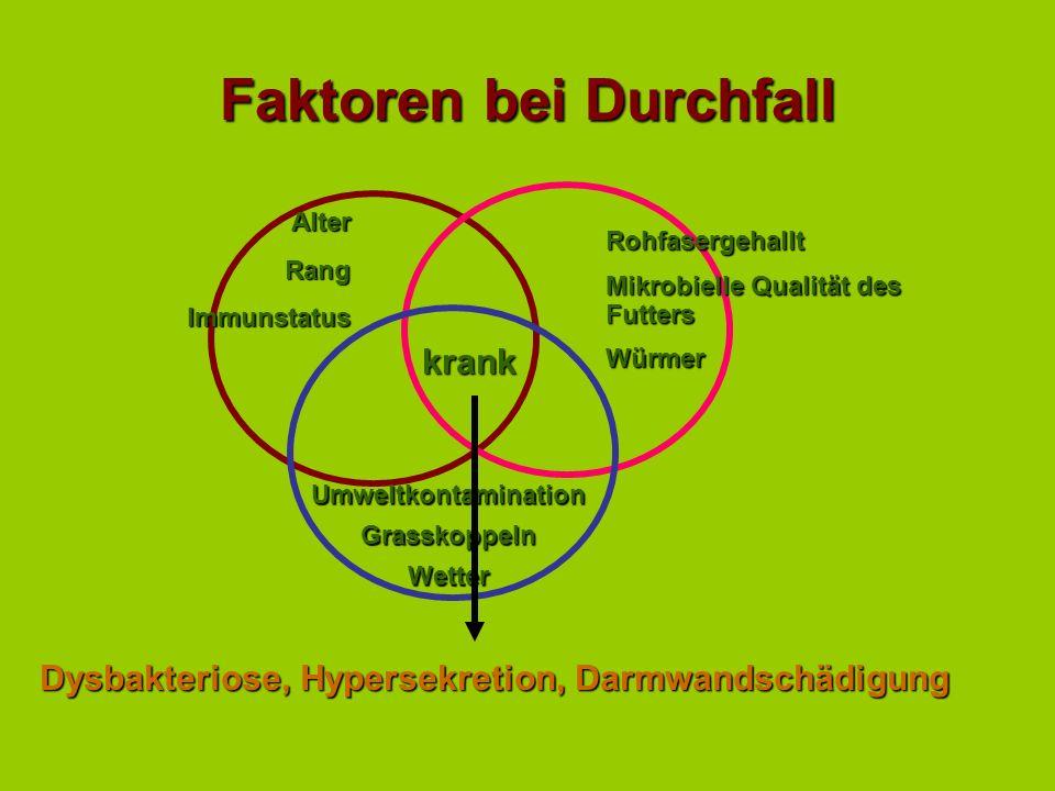 Faktoren bei Durchfall