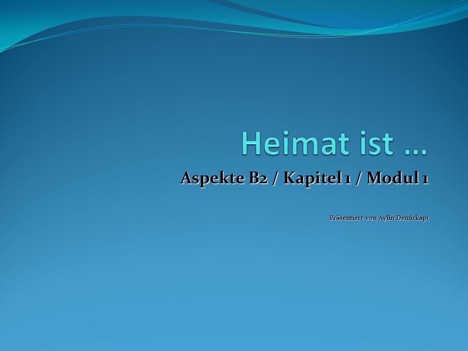 Aspekte B2 / Kapitel 1 / Modul 1 Präsentiert von Aylin Demirkapı