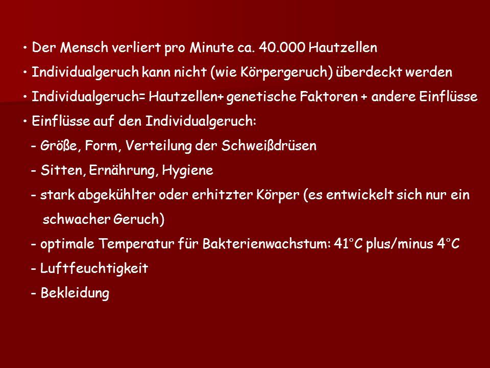 Atemberaubend Prägnante Zahnanatomie Und Morphologie Zeitgenössisch ...