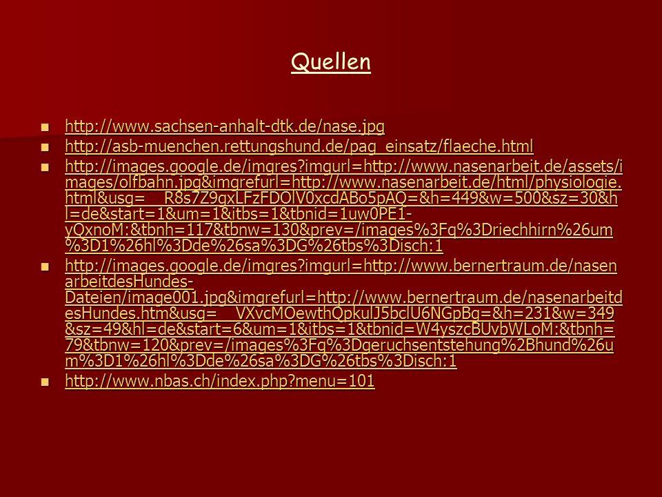 Quellen http://www.sachsen-anhalt-dtk.de/nase.jpg