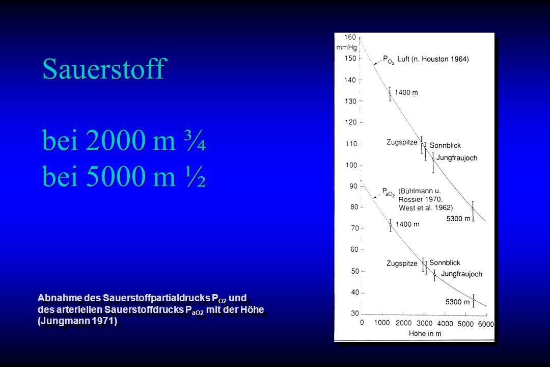 Sauerstoff bei 2000 m ¾ bei 5000 m ½
