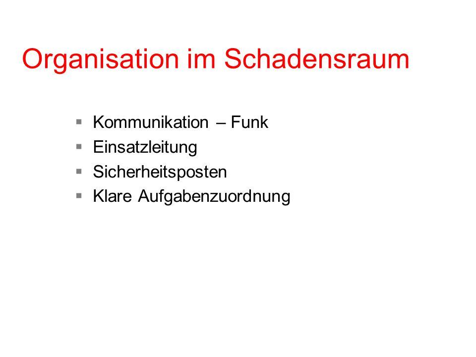 Organisation im Schadensraum