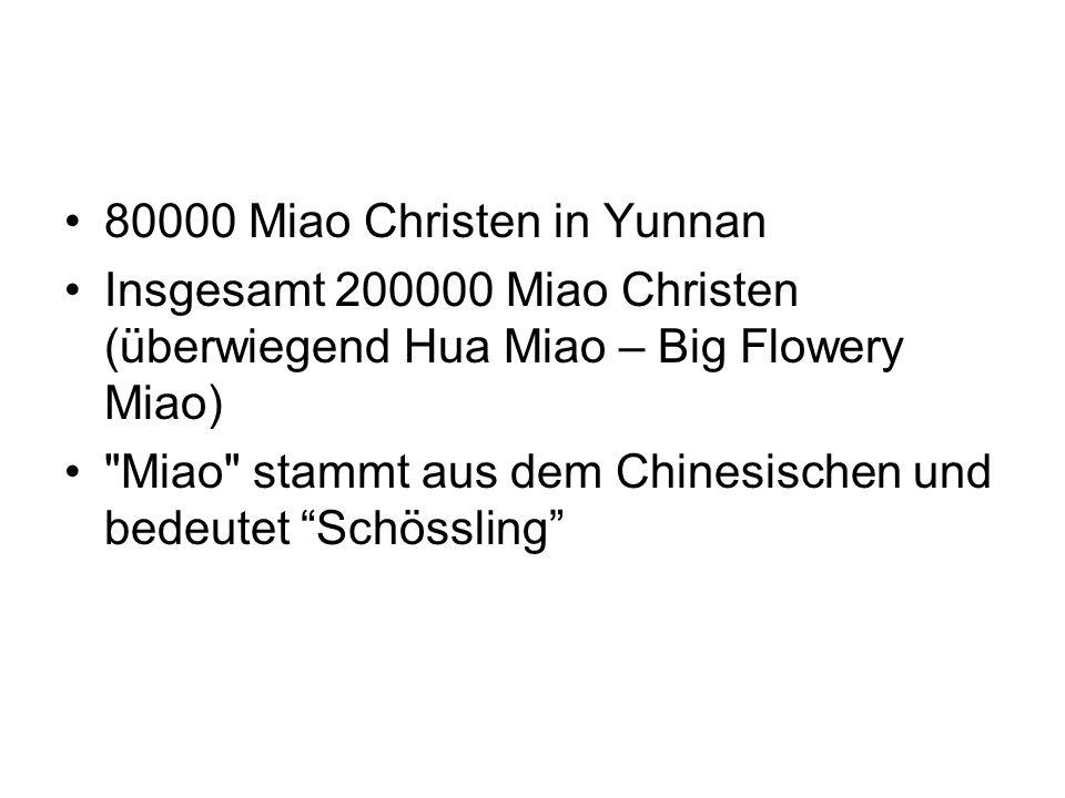 80000 Miao Christen in Yunnan