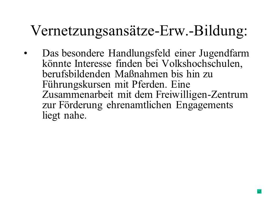 Vernetzungsansätze-Erw.-Bildung: