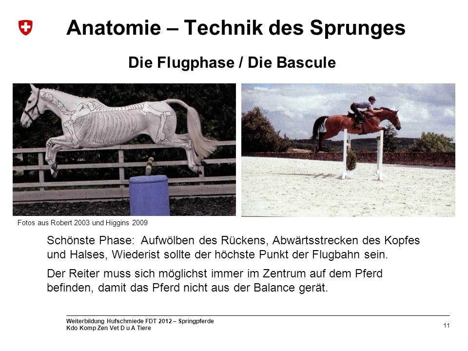 Erfreut Anatomie Des Halses Dreiecke Bilder - Anatomie Ideen ...