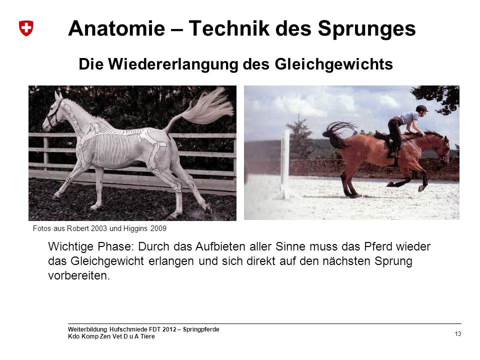 Wunderbar Menschliche Anatomie Technik Referenz Galerie - Anatomie ...