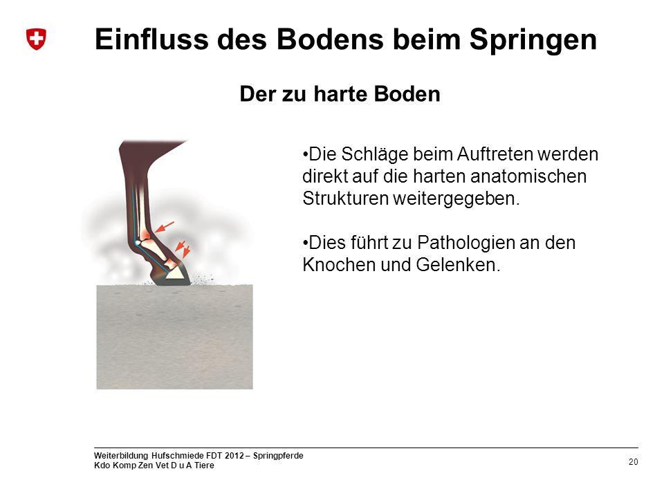 Fein Van De Graaff Menschliche Anatomie Ideen - Anatomie Ideen ...