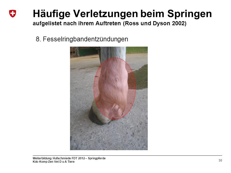 Häufige Verletzungen beim Springen aufgelistet nach ihrem Auftreten (Ross und Dyson 2002)