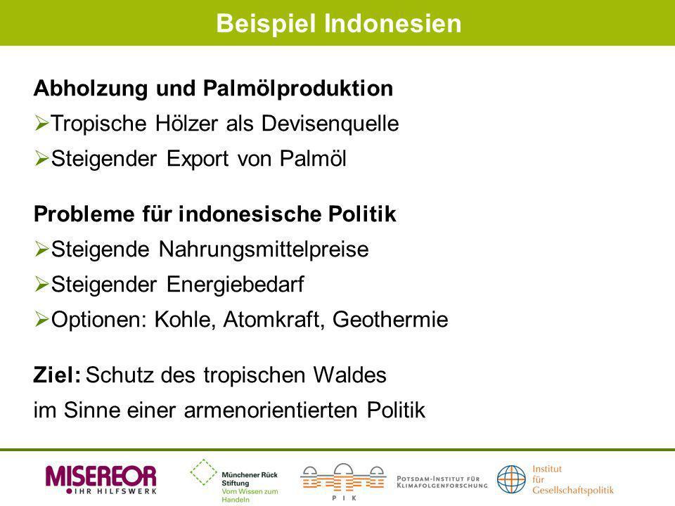 Beispiel Indonesien Abholzung und Palmölproduktion