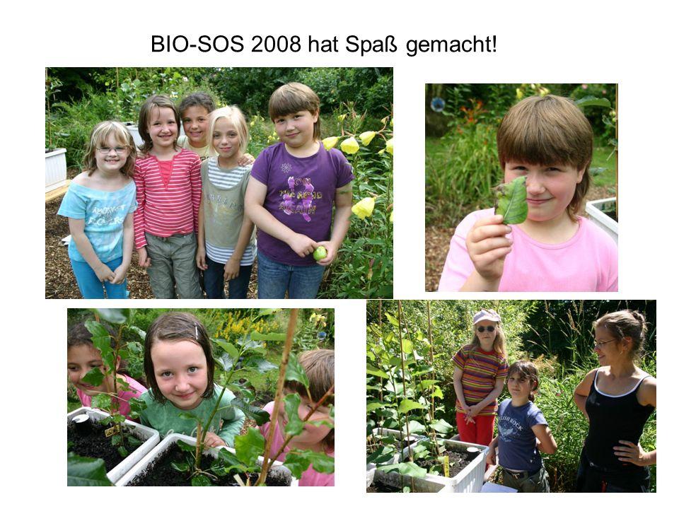 BIO-SOS 2008 hat Spaß gemacht!