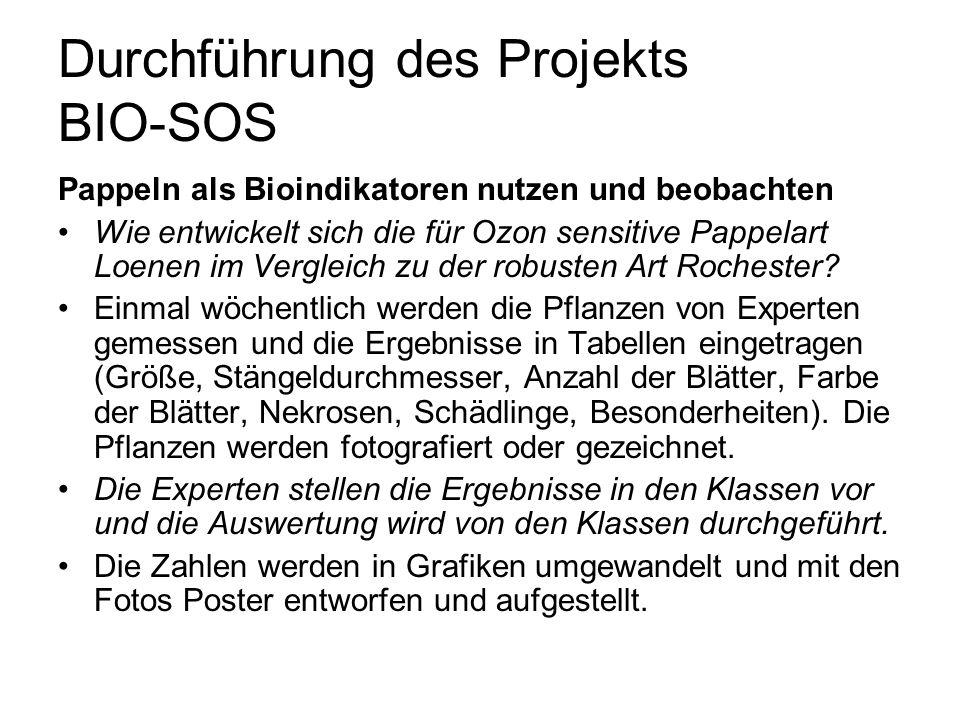 Durchführung des Projekts BIO-SOS