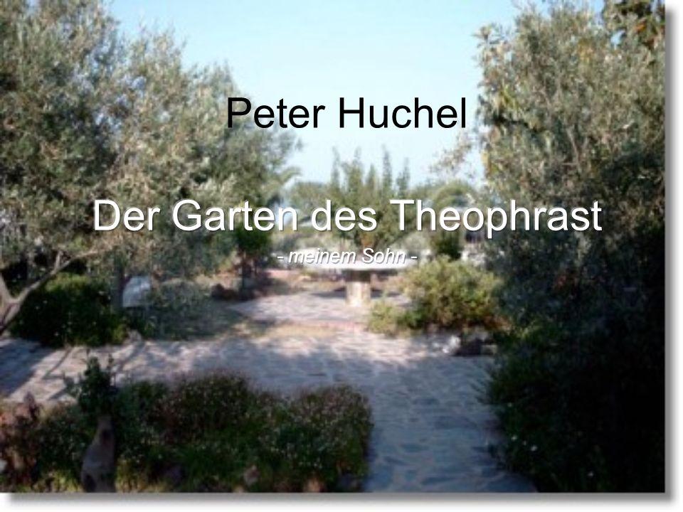 Der Garten des Theophrast - meinem Sohn -