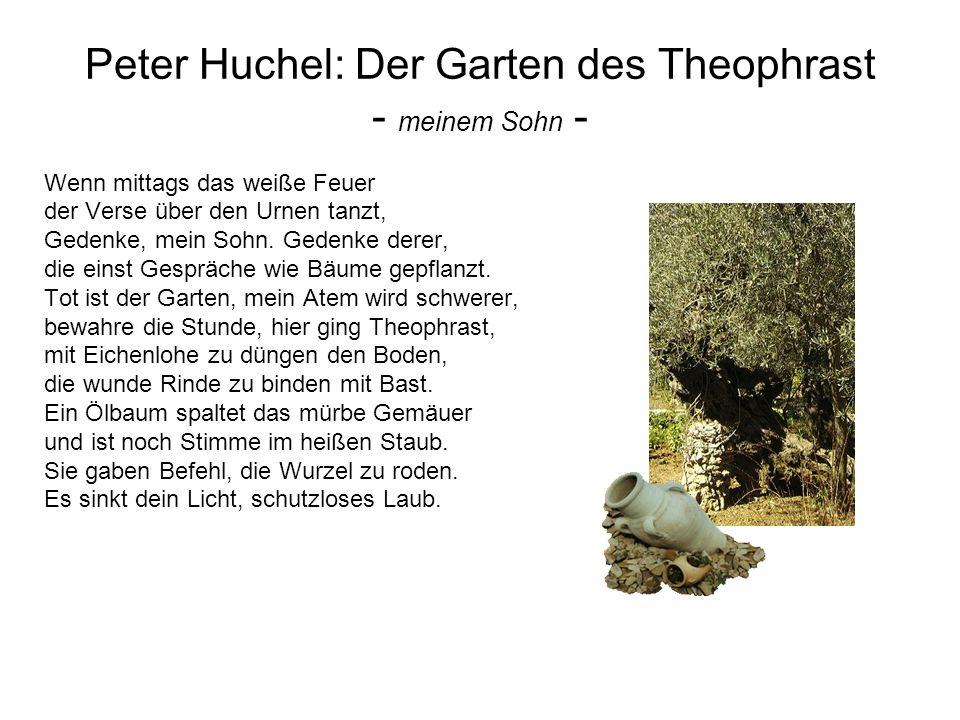 Peter Huchel: Der Garten des Theophrast - meinem Sohn -
