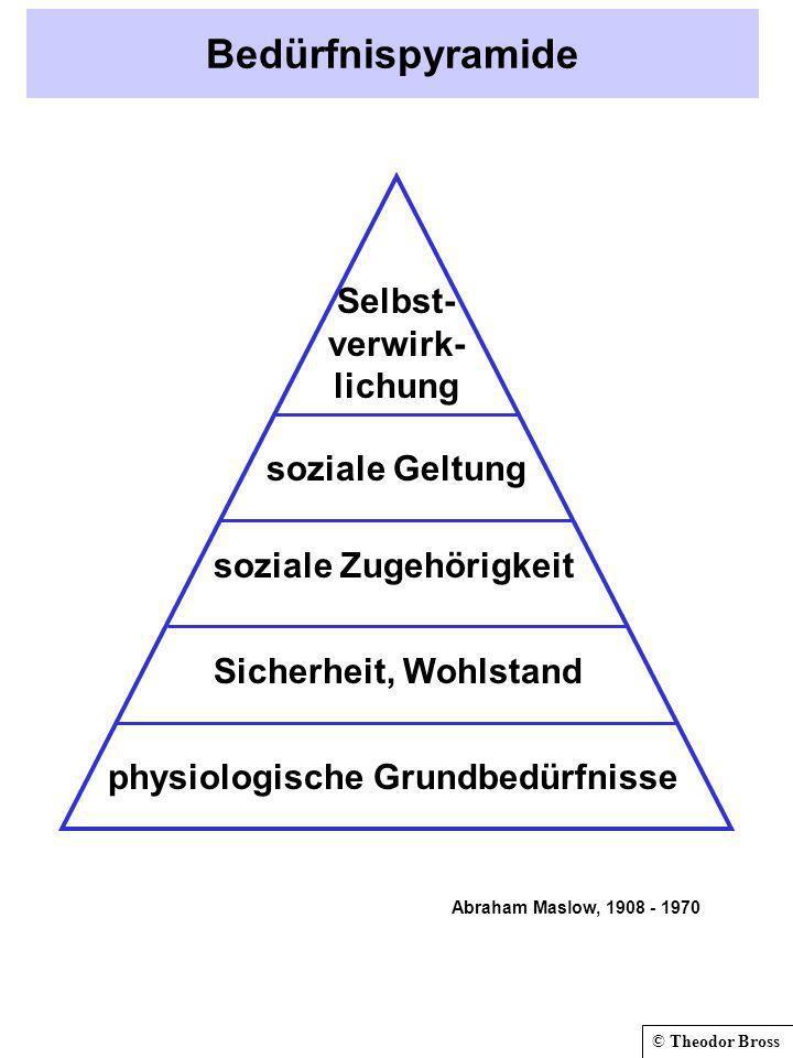 Bedürfnispyramide Selbst- verwirk- lichung soziale Geltung
