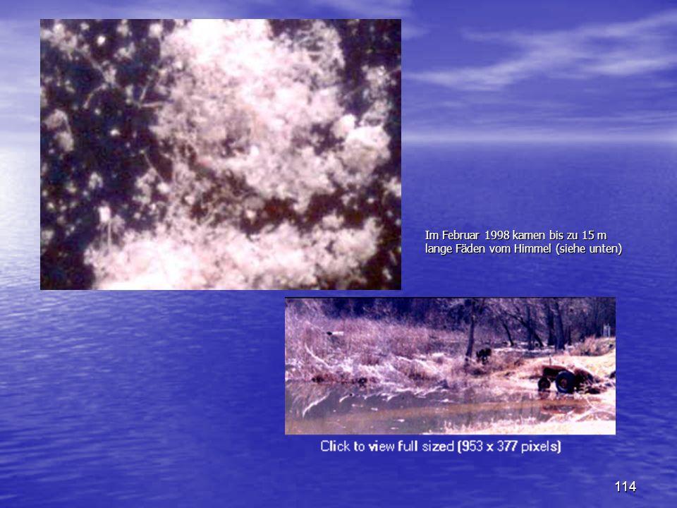 Im Februar 1998 kamen bis zu 15 m lange Fäden vom Himmel (siehe unten)