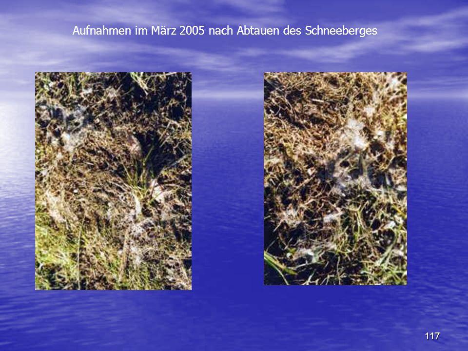 Aufnahmen im März 2005 nach Abtauen des Schneeberges
