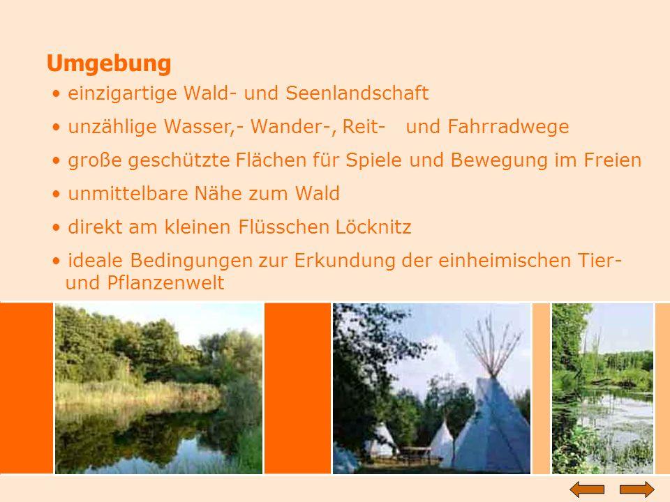 Umgebung einzigartige Wald- und Seenlandschaft