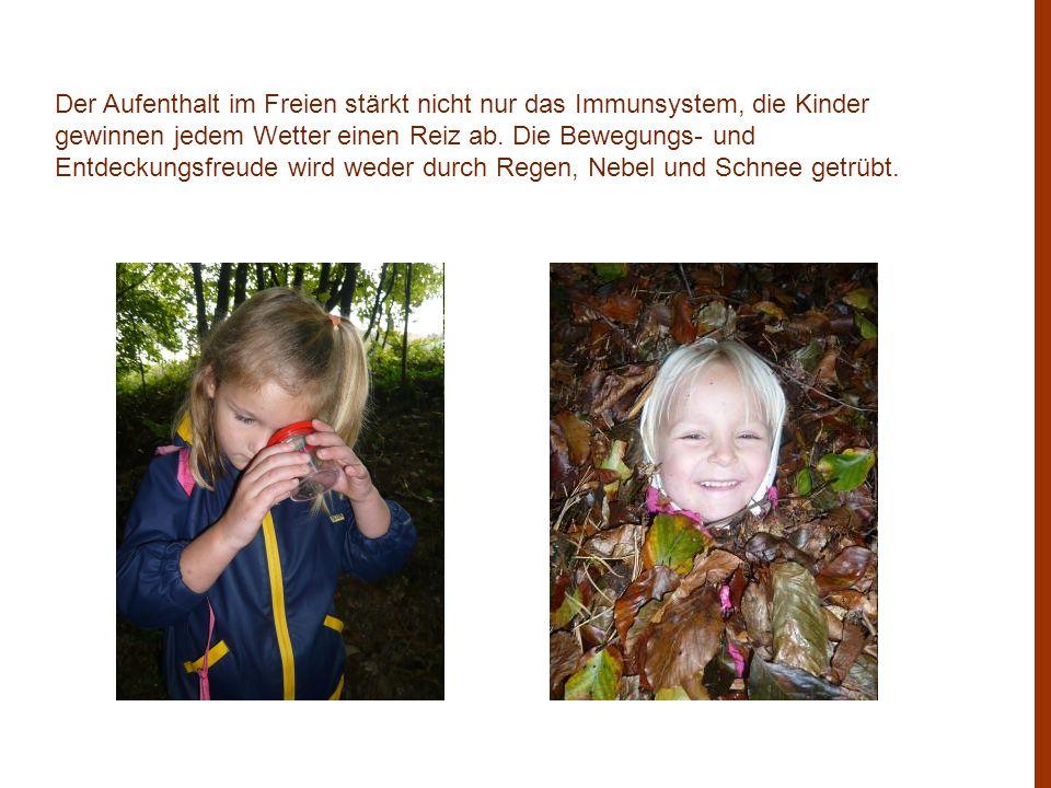 Der Aufenthalt im Freien stärkt nicht nur das Immunsystem, die Kinder gewinnen jedem Wetter einen Reiz ab.