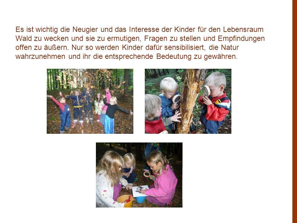 Es ist wichtig die Neugier und das Interesse der Kinder für den Lebensraum Wald zu wecken und sie zu ermutigen, Fragen zu stellen und Empfindungen offen zu äußern.