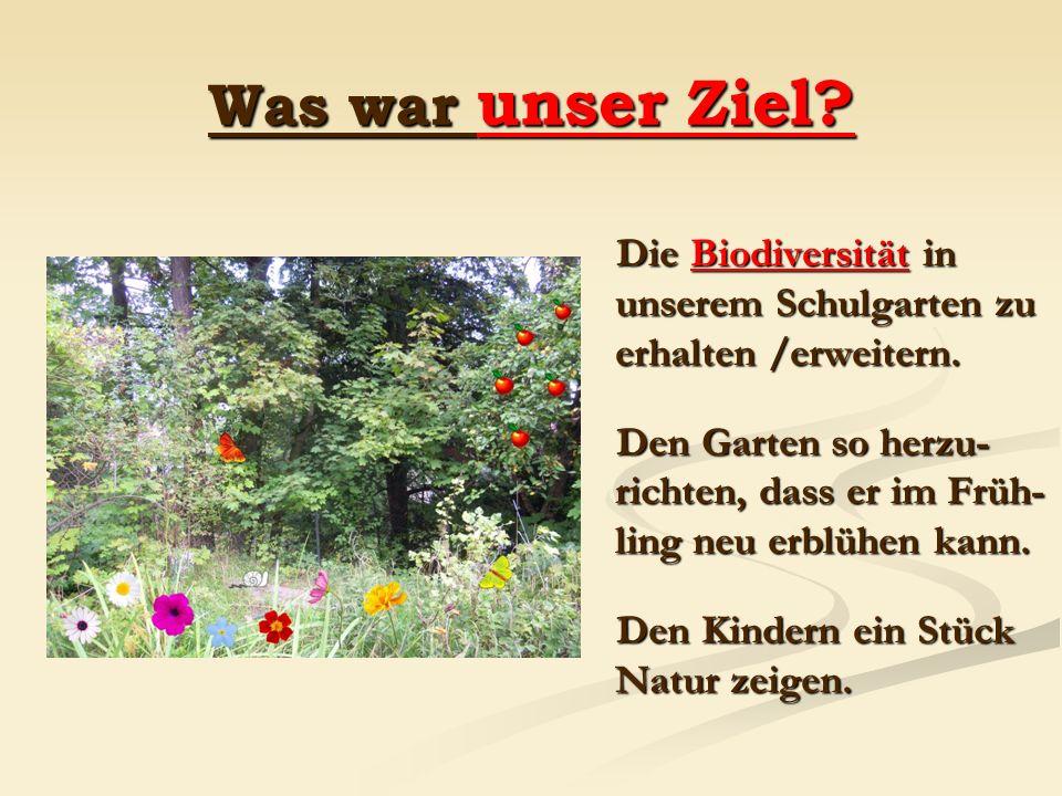 Was war unser Ziel Die Biodiversität in unserem Schulgarten zu erhalten /erweitern.