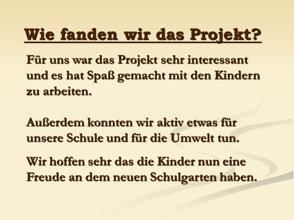Wie fanden wir das Projekt