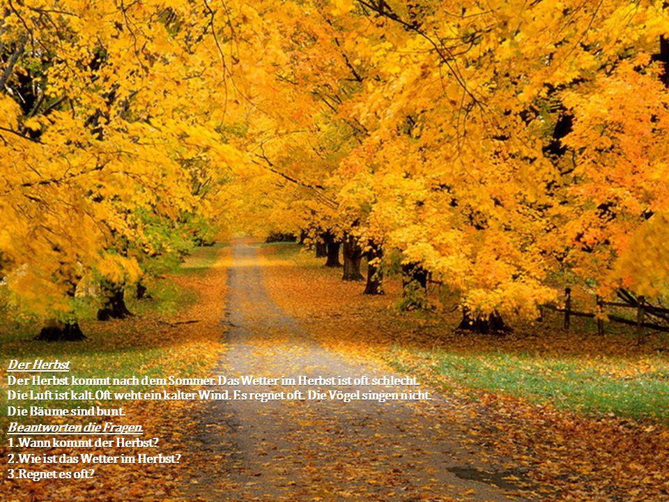 Der Herbst Der Herbst kommt nach dem Sommer. Das Wetter im Herbst ist oft schlecht.