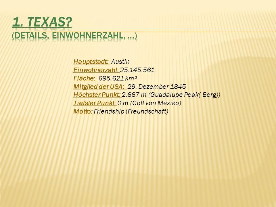 1. TEXAS (Details, Einwohnerzahl, ...)