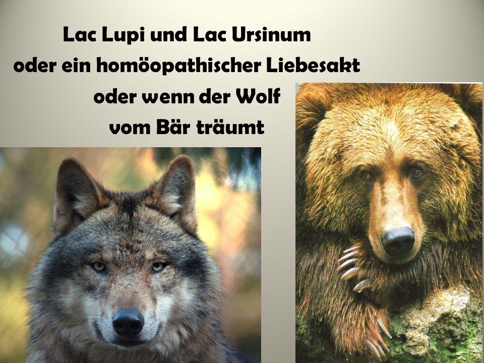 Lac Lupi und Lac Ursinum oder ein homöopathischer Liebesakt